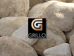 Grillo kiest voor IDEA-ONLINE